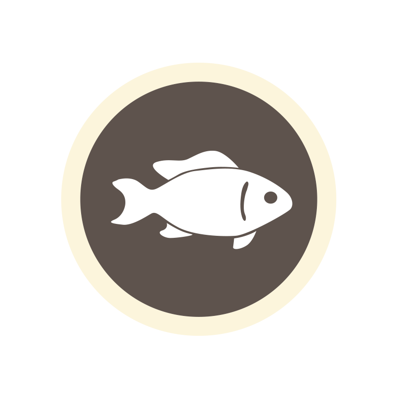 FishIcon
