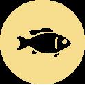 FishesStronger