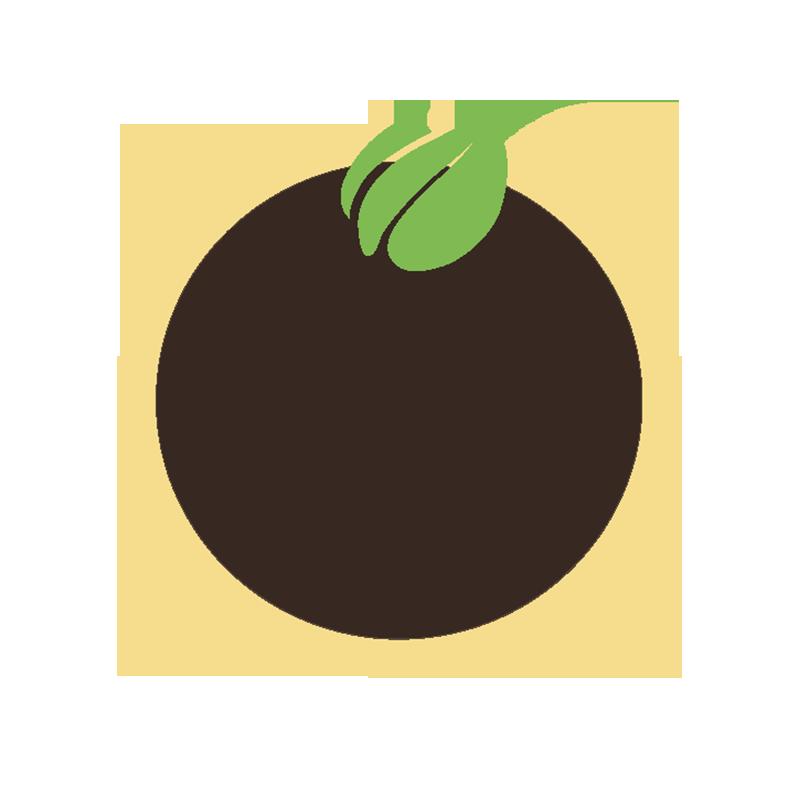 BioVegetables